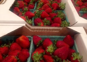Pell Farms Boxed Strawberries